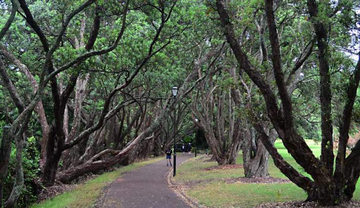 domain-hiking-path