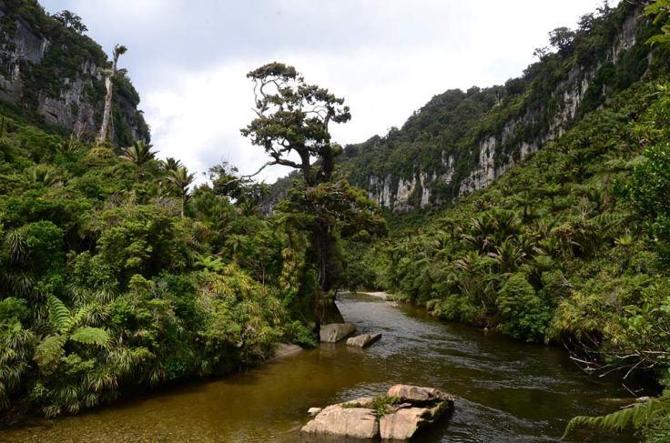 punakaiki-gorge