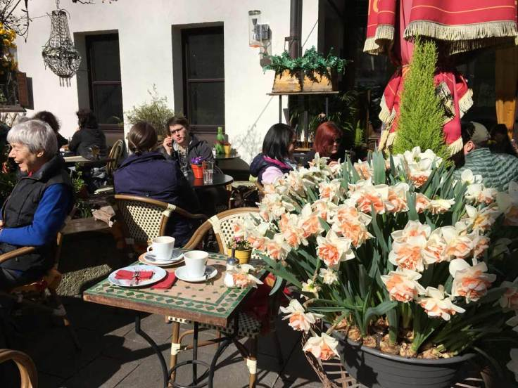 cafe-garden-with-flowers