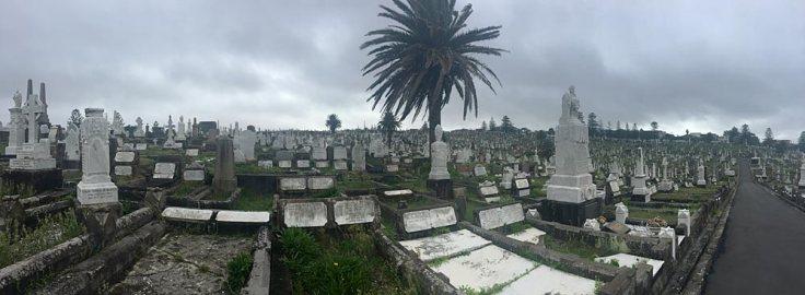waverly-cemetery